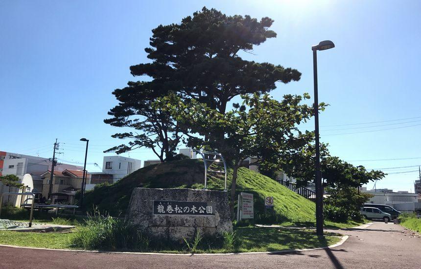 龍巻松の木公園